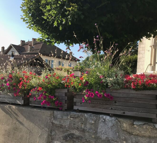 Eglise fleurs IMG_1526