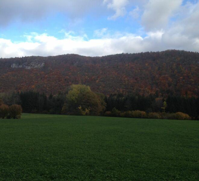 Paysage d'automne IMG_0744